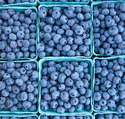 Victor Farmers Market Blueberries
