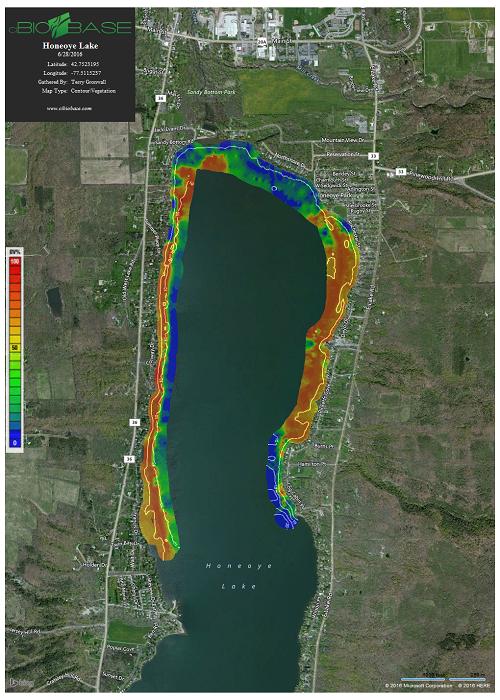 Aquatic Vegetation Management Program Ontario County NY - Us vegetation map