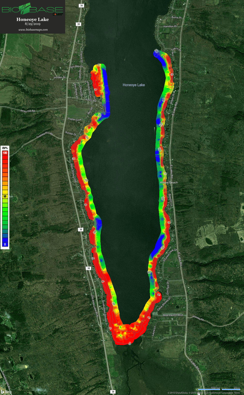 Honeoye Lake Southern Lake Basin Macrophyte Map 082919