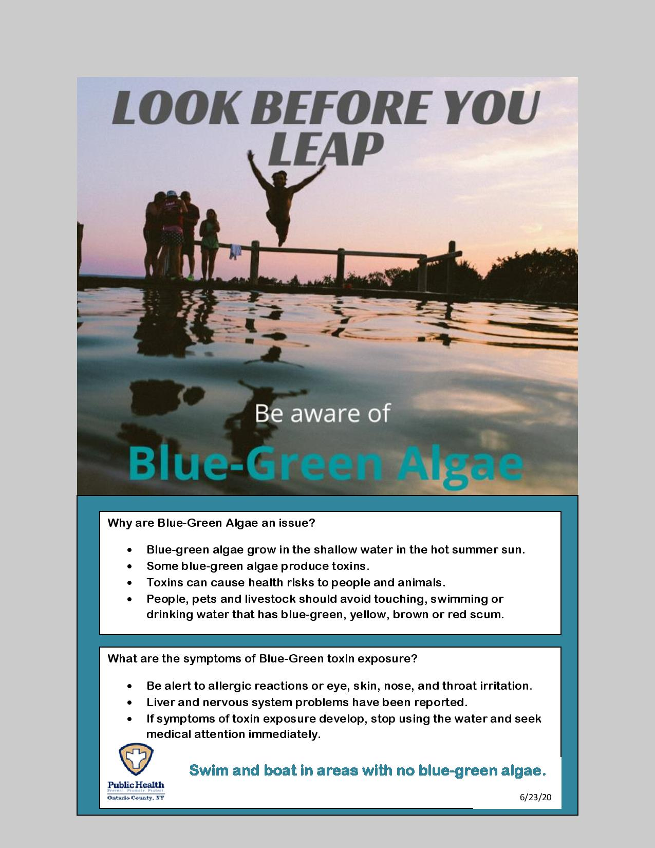 Blue Green Algae-page-001